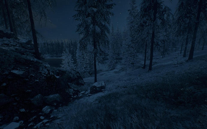 Foggy_Winter_Forest_Night_04