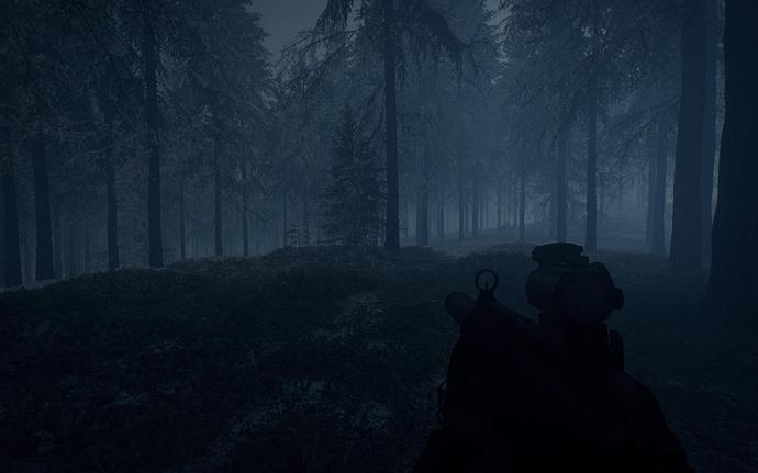 Foggy_Winter_Forest_Night_02