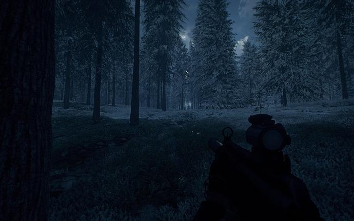 Foggy_Winter_Forest_Night_03