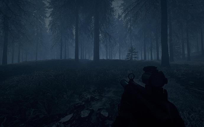 Foggy_Winter_Forest_Night_01