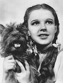 260px-The_Wizard_of_Oz_Judy_Garland_Terry_1939